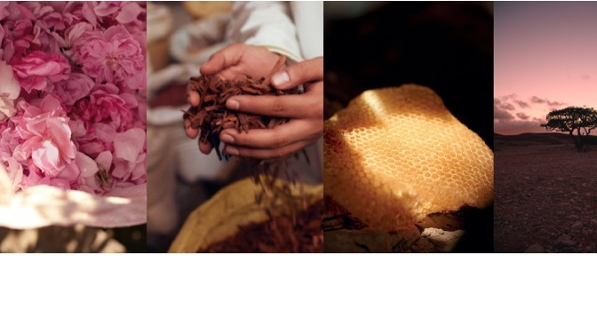 DISCOVER OJAR'S ABSOLUTE PERFUME INGREDIENTS