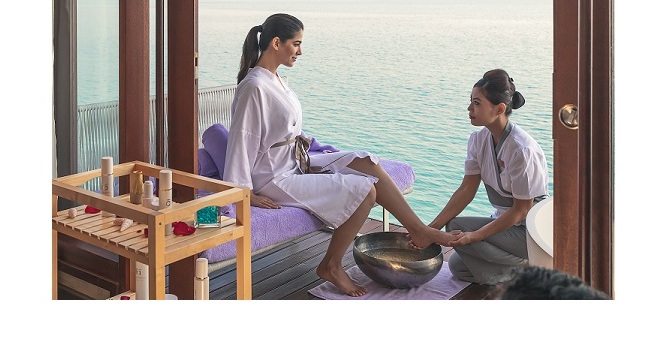 THE OZEN COLLECTION Introduces Wellness…..